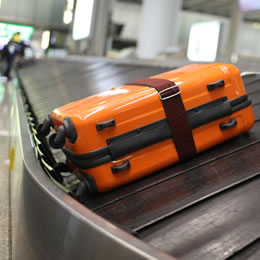 Spotlight on baggage operations